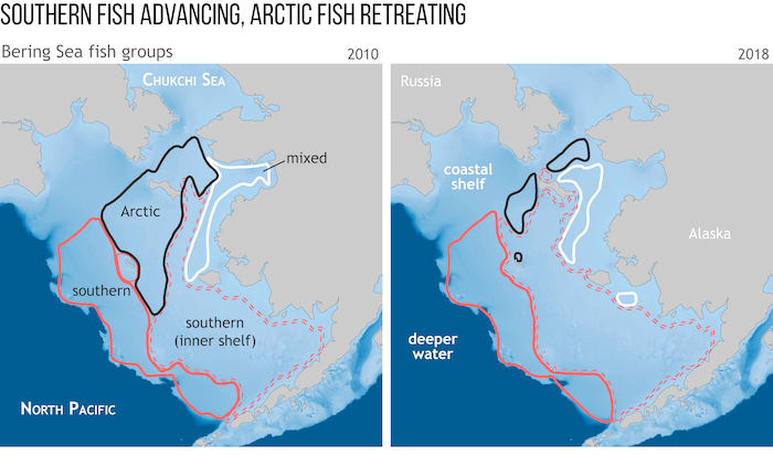 Figure 2. These maps show how the location of Arctic and sub-Arctic fish communities have changed over the past decade or so in the coastal shelves of the Bering Sea. The ranges of communities of southern species (red solid and dotted outlines) have expanded northward, while the range of Arctic species (black) have contracted northward. Figure courtesy of NOAA Climate.gov, adapted from 2019 Arctic Report Card essay by J. Thorson et al, 'Comparison of Near-bottom Fish Densities Show Rapid Community and Popul